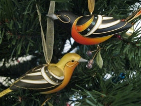 Male and female Baltimore Oriole.